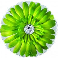 Шар (18''/46 см) Круг, Цветок, Гербера, Зеленый, 1 шт.